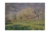 Apple Trees Blooming, C. 1895 Giclee Print by Isaak Ilyich Levitan