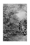 Kenyah Men Hunting for Monkeys with Blowpipes, Borneo, 1922 Giclee Print by Charles Hose