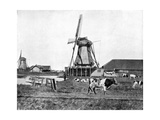 Dutch Windmills, Holland, Late 19th Century Giclee Print by John L Stoddard