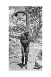 An Emu Man Performing the Sacred Totem of His Group, Australia, 1922 Reproduction procédé giclée par  Spencer and Gillen