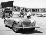 Donald Healey with an Austin Healey at a Motor Race Lámina fotográfica