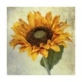 Lush Vintage Florals I Poster von Honey Malek