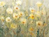 Summer in Bloom I Plakater av Tim O'toole