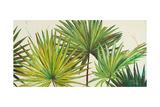 Arte Verde II Giclée-Premiumdruck von Patricia Pinto