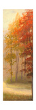 Fall Trees I Reproduction giclée Premium par Michael Marcon