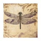 Dragonfly Premium Giclee Print by Patricia Pinto
