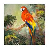 Parrots at Bay I Exklusivt gicléetryck av Jane Slivka