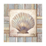 Beach Shell I Premium Giclee Print by Elizabeth Medley