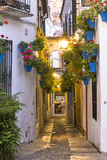 Spain, Andalusia, Cordoba. Calleja De Las Flores (Street of the Flowers) in the Old Town, at Dusk Premium Photographic Print by Matteo Colombo