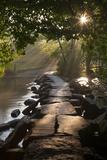 Ancient Clapper Bridge Tarr Steps Spanning the River Barle in Exmoor, Somerset, England Reproduction photographique par Adam Burton
