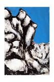 Rock Face, 2011 Giclée-tryk af Rob Woods