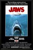 Jaws Prints