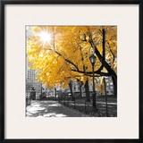 Park Pretty II Print by Assaf Frank