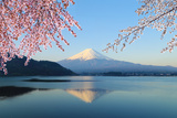 Mount Fuji, View from Lake Kawaguchiko Fotografisk tryk af  geargodz