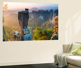 The Bastei in the Background, Elbe Sandstone Mountains, Saxon Switzerland, Germany Wall Mural by Peter Adams