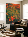 Poppy Field Design, Central California Wall Mural by Vincent James