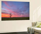 Sunset at Merced Wildlife Area, Central California Wall Mural by Vincent James