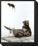 Cat and Mouse Framed Print Mount