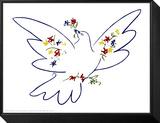 Fredsdue Indrammet og monteret tryk af Pablo Picasso