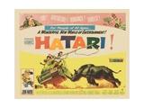 Hatari!, 1962 Gicléedruk