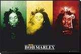 Bob Marley Framed Print Mount