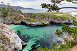Point Lobos State Natural Reserve Reproduction photographique par  Wolterk