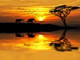 Africa Parading along the Lake Premium fototryk af  kesipun