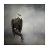 High Perch Bald Eagle Gicléetryck av Jai Johnson
