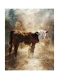 Calf in the Sunday Sun Lámina giclée por Jai Johnson