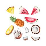 Watercolor Summer Fruits Set Prints by  lenavetka87