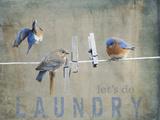 Laundry Day Bluebirds Giclée-tryk af Jai Johnson