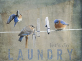 Laundry Day Bluebirds Giclee Print by Jai Johnson