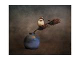 Little Sparrow Friend Reproduction procédé giclée par Jai Johnson