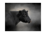 Portrait of the Black Angus Giclee Print by Jai Johnson