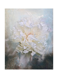 Abstract Peony in Blue Giclee Print by Jai Johnson