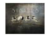 Sisters Chickadees Reproduction procédé giclée par Jai Johnson
