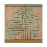 Pine Tree, 1932 Giclée-tryk af Paul Klee