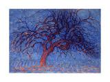 Avond (Evening): the Red Tree, 1908-10 Reproduction procédé giclée par Piet Mondrian