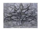 The Gray Tree, 1911 Reproduction procédé giclée par Piet Mondrian