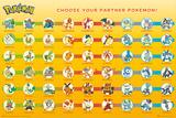 Pokemon Partner Pokemon Prints