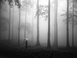 After the Rain Photographic Print by Hengki Lee