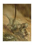 Battle Scene Between a Velociraptor and Protoceratops in the Mongolian Desert Stampe di Stocktrek Images