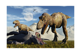 A Pair of Tyrannosaurus Rex Dinosaurs Ready to Make a Meal of a Dead Triceratops Stampe di Stocktrek Images