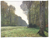 The Road to Bas-Breau, Fontainebleau, circa 1865 Fleece Blanket by Claude Monet