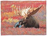 Bull Moose in Denali National Park, Alaska, USA Fleece Blanket by Dee Ann Pederson