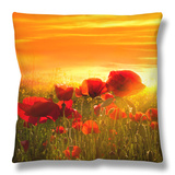 Spring Field Throw Pillow by Marco Carmassi