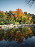 Vermont, Autumn Colors of Sugar Maple Trees Along a Stream Photographic Print by Christopher Talbot Frank