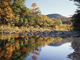 New Hampshire, White Mts Nf, Sugar Maple Reflect in the Swift River Fotografisk trykk av Christopher Talbot Frank