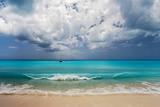 Barbuda, Leeward Islands, Eastern Caribbean, Pr Reproduction photographique par Susan Degginger