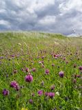 Landscape of Lewis Island, Scotland Fotografisk trykk av Martin Zwick